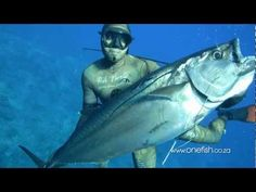 awesome Best Spearfishing Film – One Fish Going East