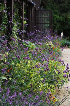 Hidcote Manor Gardens by Mark Wordy, via Flickr