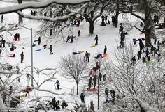 Adults and children sled at Brooklyn's Prospect Park in New York City on Tuesday. New York...