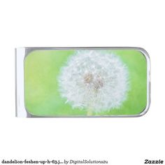 dandelion-feshen-up-h-63.jpg silver finish money clip