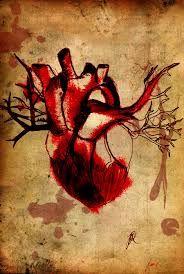 corazón anatómico antiguo - Buscar con Google