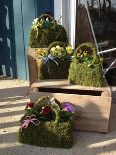 moss handbags potted up with pansies