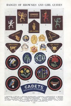 brownie guides badges - Google Search