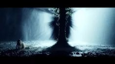 iveta bartošová - YouTube