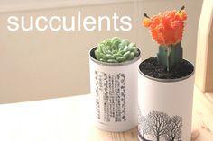 ElizaKPrints: Tutorial: Tin Can Planters for Succulents - good idea for my kids secret santa project.