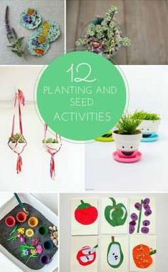 12 Fun Planting and Seed Learning Activities for Kids.