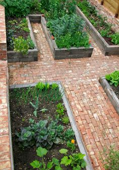 More raised beds!    I love the red bricks here. - thats a heavy duty long term garden right there....