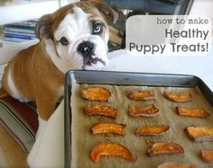 Don't forget your best buddy – puppies love homemade Whole30 Christmas gifts too! These easy-to-make real food sweet potato treats are tail-waggin' good!