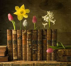 I'm not sure what I love more the display of old books or the beautiful flowers.