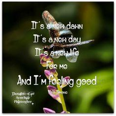 New Day - Feeling Good  #feelinggood #dailyinspiration #happiness