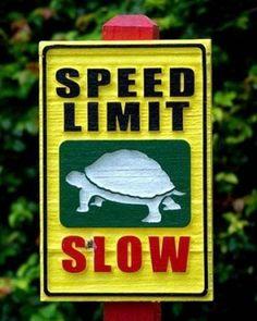 Random Funny Signs | Random Funny Zoo Signs