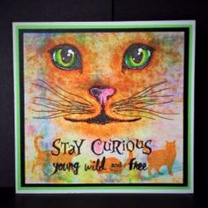 cat face stamp set with whiskers and stay curious sentiment stamp 2017 Inspiration, Image Stamp, Curious Cat, Purple Orchids, Cat Cards, Wild And Free, Pretty Cards, Cat Face, Clear Stamps