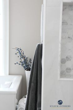 The 8 Best Benjamin Moore Paint COLOURS for Home Staging ae9e92c5fc3bf