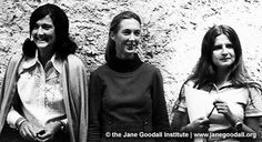 MONDAY MUSE(S) // The Trimates, aka Jane Goodall, Birutė Galdikas and Dian Fossey. These women are eternal. Their work was and is still so important.