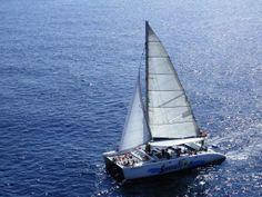 Excursions amb catamarà / Catamaran Trips, Catamaran Sensation. Lloret de Mar, La Selva. (Catalonia - Spain)