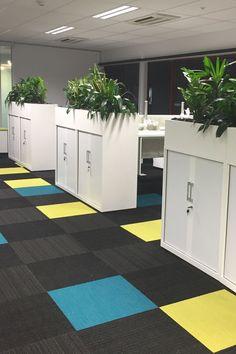 Troughs - Eco Green Office Plants Inside Garden, Roof Terraces, Green Office, Eco Green, Office Plants, Balcony Garden, Garden Ideas, Planters, Interior