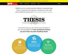 thesis diythemes