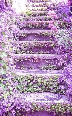 Purple... What A Wonderful World!.... ? Vintage purple lavendar collectibles and home decor at www.rubylane.com @rubylanecom (One Step Stairs)