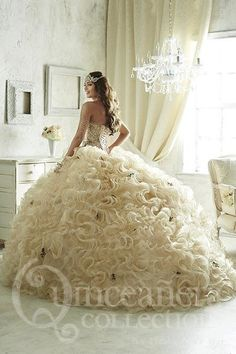 26819 | Texas Divas Boutique, Quinceanera, Bridal, Prom and Pageant Wear