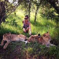 #Zimbabwe #VictoriaFalls #Africa #travelling #Safari #encounter with #Lions por: yokodoi