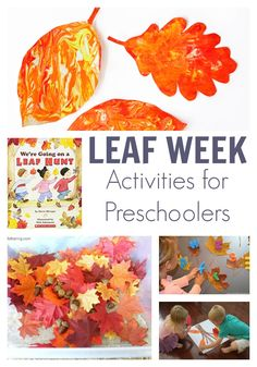 A fun week of Leaf Activities for Preschoolers featuring the picture book We're Going on a Leaf Hunt. Get creative, have fun, read, play and learn with this activity plan you can do at home or in your setting.