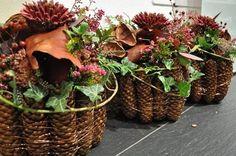 Vhodné rostliny do hřbitovních dekorací | Bydlení pro každého Deco Floral, Floral Design, Acorn Crafts, Christmas Wreaths, Xmas, Fall Arrangements, Fall Diy, Flower Centerpieces, Ikebana