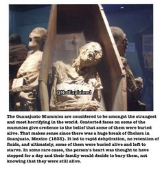 No disrespect for the dead but when I saw this I could only think of the Night Mother<<<<< LISTENER Scary Creepy Stories, Scary Stories To Tell, Ghost Stories, Horror Stories, True Stories, Creepy Things, Creepy Stuff, Creepy History, Wtf Fun Facts