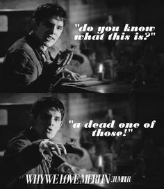 """""""Do you know what this is? A dead one of those!""""  - Merlin Bloopers"""