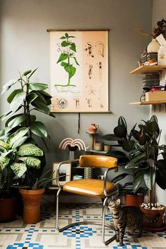 houseplants and art inside home of designer paloma lanna. / sfgirlbybay