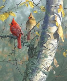 """There is a singer everyone has heard, - Loud, a mid-summer and a mid-wood bird, - Who makes the solid tree trunks sound again. He says that leaves are old and that for flowers - Mid-summer is to spring as one to ten. """"The Oven Bird"""", Robert Frost ***""""Cardinals And Birch"""" by Jim Hautman"""