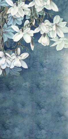 Purchase White Flowers Paintings Photography Backdrops Photo Props Studio Background from Ann Pekin Pekin on OpenSky. Flower Backgrounds, Flower Wallpaper, Dark Backgrounds, Wallpaper Backgrounds, Iphone Wallpaper, Wallpaper Ideas, Phone Backgrounds, Chinese Painting, Chinese Art