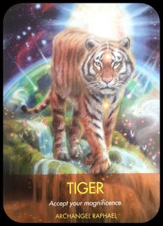 Tiger ~Accept Your Magnificence. Animal Spirit Guides, Spirit Animal, Animal Symbolism, Angel Guidance, Angel Prayers, Black Angels, Angel Cards, Guardian Angels, Orthodox Icons