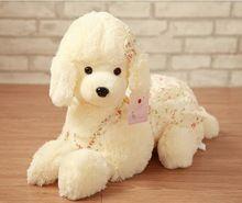 Miękkie i pluszowe zwierzęta katalog lalek i pluszowych zabawek, zabawki i hobby, a bardziej na Aliexpress.com-Page 14