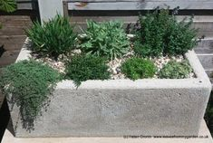 How to make a Hypertufa Trough Large Concrete Pavers, Cement Pots, Gardening Courses, Concrete Crafts, Back Gardens, Container Plants, Outdoor Rooms, Garden Pots, Garden Ideas