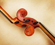 {two violin scrolls detail in ambient light} Lashof Violins