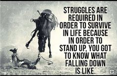 Have you ever noticed that our horses teach us the secrets of life???