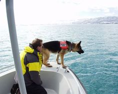 Great Basin K9 Search and Rescue  Search and Rescue Dogs Serving Utah, Wyoming, Idaho, and Montana  Cadaver and water search