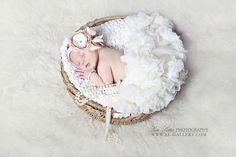 Lisa Lotter Photography | Orlando Newborn Photographer