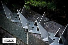 Security wall spikes for perimeter walls manufactured as well as ...