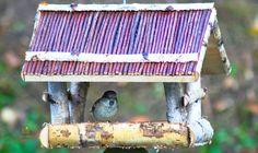 Bird Feeders, Outdoor Decor, Photography, Home Decor, Photograph, Decoration Home, Room Decor, Fotografie, Photo Shoot