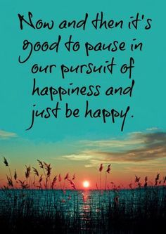 Now and then it's good to pause in our pursuit of happiness and just be happy | Inspirational Quotes