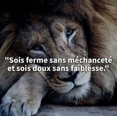 short inspirational quotes for women thoughts Citation Nature, Quote Citation, Isaac Newton, Successful Life Quotes, Silence Quotes, Kindness Quotes, Inspirational Quotes For Women, French Quotes, Nature Quotes