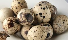 Fresh quail eggs make a great treat for many omnivorous lizard species. Duck Eggs, Quail Eggs, Lizard Species, Japanese Bento Box, Cute Egg, Chicken Eggs, Cheap Meals, Saturated Fat, Allergies