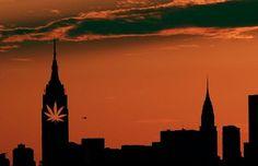 #NewYork Legalizes Medical #Marijuana | #CannabisNow Magazine