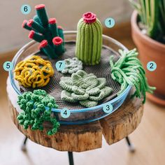 """Amigurumi Succulent Plants - Free English Pattern - PDF Format, click """"DOWNLOAD PROJECT SHEET HERE"""" http://commonthread.us/discover/free-patterns/crochet-patterns/crochet-diy-succulent-plants-2/"""