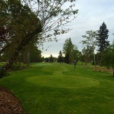 It wouldn't be the Northwest without a few days like this one. Oakbrook Golf Club, Lakewood, WA.