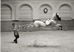 Spanish Riding School, 1952.  Photography by Hans Hammarskiöld.