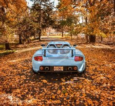 Autumn 🍂 with my Blue Eyed Girl ------------------------------------------------- #Porsche |#beautiful |#beauty |#carreragt |#mercedes |#girl |#art |#wow |#cars |#new |#racing |#luxury |#carporn |#happy |#food |#instacar |#instagood |#love |#follow |#me |#model |#nyc |#selfie |#picoftheday |#photooftheday |#fashion |#ferrari |#like |#love #gt3 #photography