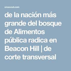 de la nación más grande del bosque de Alimentos pública radica en Beacon Hill | de corte transversal