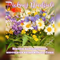 Herbs, Inspirational, Plants, Herb, Flora, Plant, Inspiration, Spice